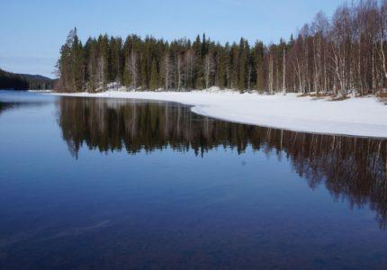 6-luchshih-nacionalnyh-parkov-rossii-dlja-otdyha-vsej-semej-ce10973