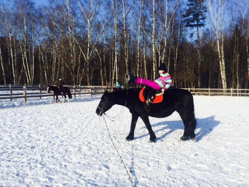 Сайты конных клубов в москве все о клубе распутин в москве