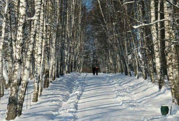 jasnaja-poljana-zimoj-ekskursija-s-foto-progulka-po-jasnoj-poljane-bc5aae0