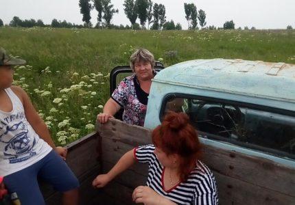 otdyh-v-derevne-za-lesnoj-klubnikoj-na-samodelnom-traktore-s-babushkoj-za-rulem-3d7d626