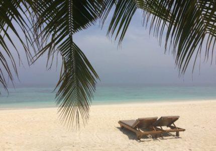 oteli-na-maldivah-romantika-i-ohota-za-hishhnymi-zvezdami-otdyh-na-maldivskih-ostrovah-moskva-maldivy-otel-banjan-tri-otzyv-c90ca44