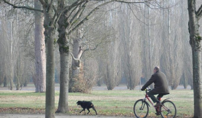 versal-dvorec-i-parki-kak-minovat-ocheredi-i-pokormit-vydru-versal-kak-dobratsja-iz-parizha-francuzskij-reguljarnyj-park-foto-68c1e55